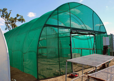 Greenhouse Cover - Green